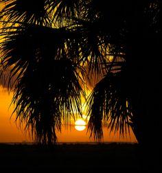 Galveston sunset by rick stephens (rc56st), via Flickr