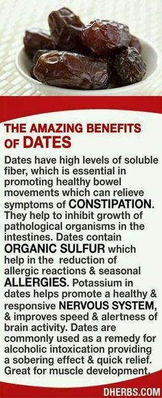 Dates info
