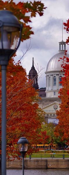 Old Montreal - Quebec | Canada