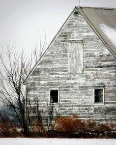 rustic rural - a white barn Farm Barn, Old Farm, Country Barns, Country Living, Barns Sheds, White Barn, Rustic Barn, Barn Wood, Barn Quilts