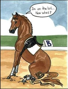 Who knew it would be so easy. Step one: Fall off. Step two: trust your horse to wait for you to get up.