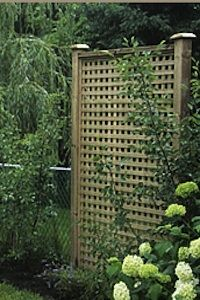 Outdoor Privacy Screens  What is it about lattice fences that add to a garden,