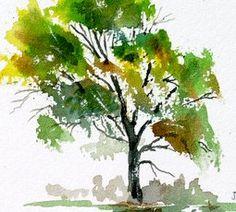 Jim's Watercolor Gallery - Painting Oak Trees