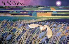 Carry Akroyd - Fen Owl