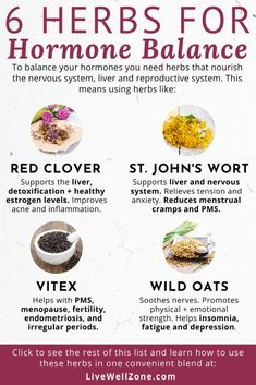 These herbs that balance hormones are the best natural remedies for female hormonal imbalance. Learn how to use these supplements to balance hormones fast. Équilibrer Les Hormones, Foods To Balance Hormones, Balance Hormones Naturally, Holistic Nutrition, Health And Nutrition, Healthy Holistic Living, Child Nutrition, Hormone Imbalance Symptoms, Déséquilibre Hormonal