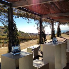 Our terrace between the vineyards