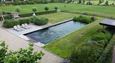 Rooftop Pool, Outdoor Pool, Outdoor Gardens, Outdoor Spaces, P Garden, Backyard Pool Landscaping, Pool Construction, Water Features, Landscape Design