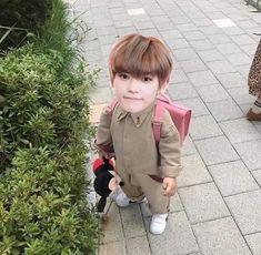 Nct Taeyong, Kpop Memes, Funny Memes, Nct 127, Sungjae And Joy, Nct Dream Renjun, Fandom Kpop, Nct Life, Jung Jaehyun