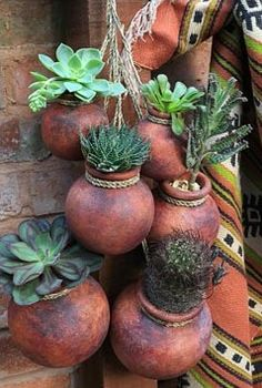 Drought resistant succulents and cactus growing in suspended Mexican terracotta pots.  I love this.  Living in Texas where it's so hot and dry has made me rethink a lot of my planting ideas.  Succulents and drought-resistant plants that are native to the area seem to be the way to go here.