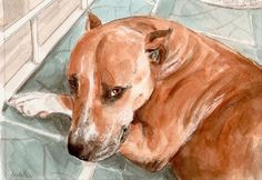 Wow! Beautiful, such detail!  Custom Done Watercolor Portraits 5x7 inches by Drusilla on Etsy  #hvnyteam