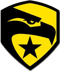 """[Single Count] Custom and Unique (3 x 3"""" Inches) GI Joe Eagle Logo with Star Iron On Embroidered Applique Patch {Yellow and Black Colors}"""
