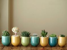 growing cups... going to use tiny, antique terra cotta french pots