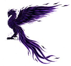 Pheonixes images black phoenix! :) HD wallpaper and background photos ...