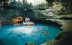 One of my favorite places in the world to dive, Devils Den Underground Spring in Williston, FL