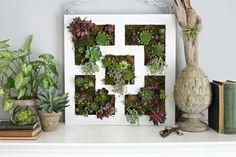 fabriquer un mur végétal intérieur tableau végétal diy
