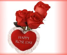 Happy Rose Day 2017 gulaab images, happy Rose Day 2017 gulaab profile pics, happy rose day 2017 gulab dp, happy rose day 2017 gulab images, happy rose day 2017 gulab profile pics, happy Rose Day 2017 red rose dp, happy Rose Day 2017 red rose images, Happy Rose Day 2017 red rose profile pics, happy rose day dp for her, Happy Rose Day gulaab dp, Happy Rose Day gulaab images, Happy Rose Day gulaab profile pics, Happy Rose Day gulab dp, Happy Rose Day gulab images, Happy Rose Day gulab profile…