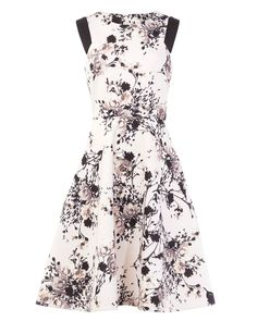 Phase Eight Eugenia Floral Dress Pink