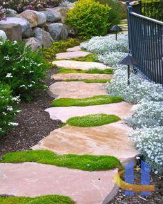Steingarten anlegen Trittsteine Ideen Gestaltung