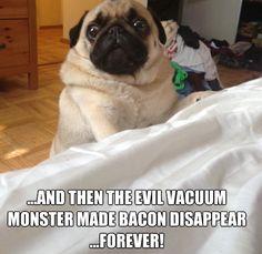Evil Vacuum. Buoy!! @Ashley Cogswell