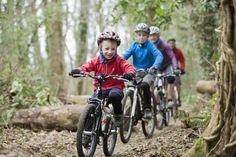 Billedresultat for mountainbike family Family Adventure, Savannah Chat, Mountain Biking, Bicycle, Image, Google Search, Wales, Family Travel, Ireland
