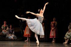 Hee Seo ; American Ballet Theatre ; Giselle Julie Kent, Ballet Performances, Svetlana Zakharova, American Ballet Theatre, Dance It Out, Ballet Costumes, Ballet Dancers, Seo, Ballet Skirt