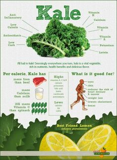 Yet another lovely info graphic about the wonders of Kale. But truly, ALL GREEN LEAFY VEGETABLES impart an array of benefits to their consumer. If you have thyroid issues, kale could exacerbate them -- but chard, purslane and lambs quarters could be a good alternative  #kale #greens