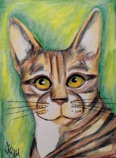 "Aceo Original  ""BENGAL""   pencil/ink #OutsiderArt"