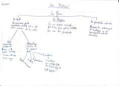 Treballant l'esquema (Mapa conceptual)