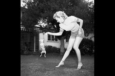 Marilyn Monroe playing with Chihuahua in Beverly Hills, California.