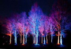 landscape lighting design How To Run Landscape Lighting Wire Under Driveway order Landscape Gardening Belfast, Landscape Lighting Layout Design outside Outdoor Landscape Lighting For Trees Landscape Lighting Transformer, Landscape Lighting Kits, Tree Lighting, Outdoor Lighting, Lighting Ideas, Park Lighting, Backyard Lighting, Transformers, Blitz Design