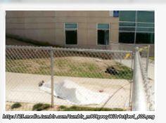 Columbine and other stuff Columbine High School Massacre, Rachel Scott, Colorado, Forensic Psychology, Natural Born Killers, School Shootings, Criminology, Serial Killers, True Crime