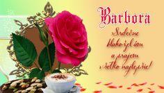 Barbora Srdečne blahoželám a prajem všetko najlepšie!
