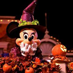 Halloween in Disney. Disney Day, Disney Trips, Disney Love, Disney Magic, Disney Parks, Disney Travel, Disney Stuff, Disney Vacations, Mickey Minnie Mouse