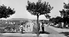 Dún Laoghaire is officially a 'port of regional significance' on account of its contribution to maritime tourism, cultural and urban development. Old Photos, Vintage Photos, Michael Church, Dublin Ireland, Regional, Past, Irish, Tourism, Dolores Park