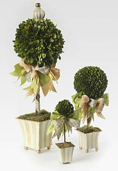 MacKenzie-Childs Topiary | Shop Zsa Zsa Bellagio