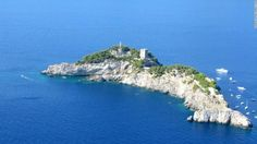 Dolphin Island Italia - Menakjubkan! Ada Pulau Mirip Lumba-lumba di Sini, Begini…