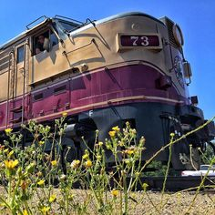 #Summer in #NapaValley is magnificent. #VisitNapaValley by winetrain