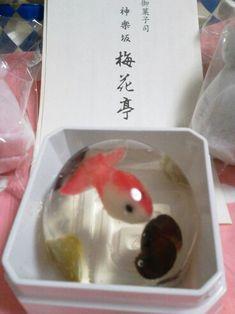 Japanese koi raindrop cake
