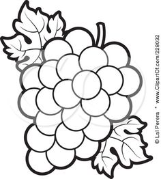 g is for grapes Coloring pages Grape bunch Flower outline