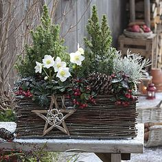 26 Christmas Garden And Patio Decoration Ideas Christmas Planters, Christmas Arrangements, Christmas Centerpieces, Xmas Decorations, Outdoor Christmas Wreaths, Country Christmas, Winter Christmas, Christmas Crafts, Magical Christmas