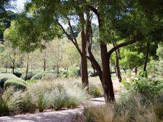 Musk Cottage by Rick Eckersley- location Flinders, Victoria