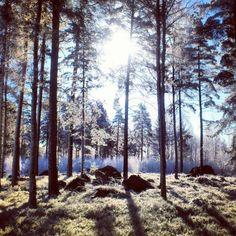Falun, Sweden