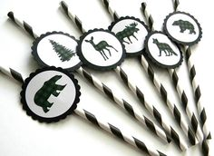 12 Plaid Animal Party Straws Lumberjack Party First