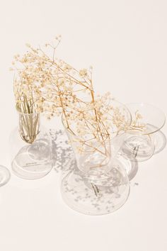 The Gather Vases extend the process of arranging flowers to the vessels they are…