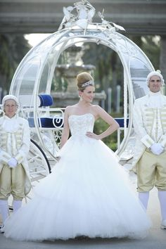 Here's a blog post dedicated to a Disney Cinderella Inspired Wedding.