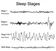The science of sleep! #netmums
