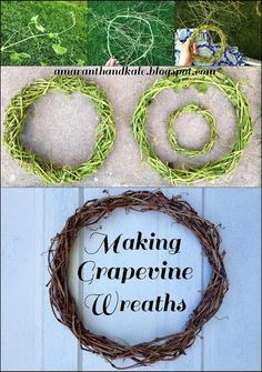 Amaranth & Kale: Making Grapevine Wreaths ...A great end of the summer project. Perfect for Fall decorating!