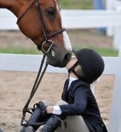 Horse shows. Love this.  We made many lifetime friends, and I think the boys loved showing the ponies.