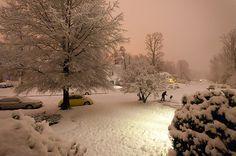 love the sky when it snows