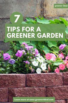 7 Tips for A Greener Garden Prepping the garden for the approaching year is enormously important. Organic Soil, Organic Gardening, Gardening Tips, Get Rid Of Aphids, Growing Ginger, Vegetable Garden Design, Vegetable Gardening, Microorganisms, Organic Matter